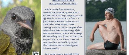 Robin Lajoie Pursues Epic Swim Around Pelee Island In Support of Wild Birds!