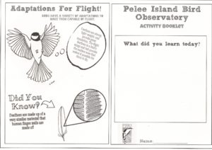 pibo-activity-book-2016-pg-10001