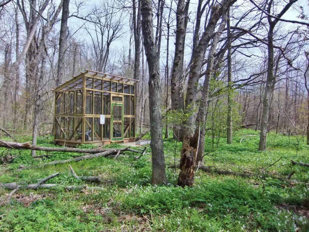 banding station spring 2017