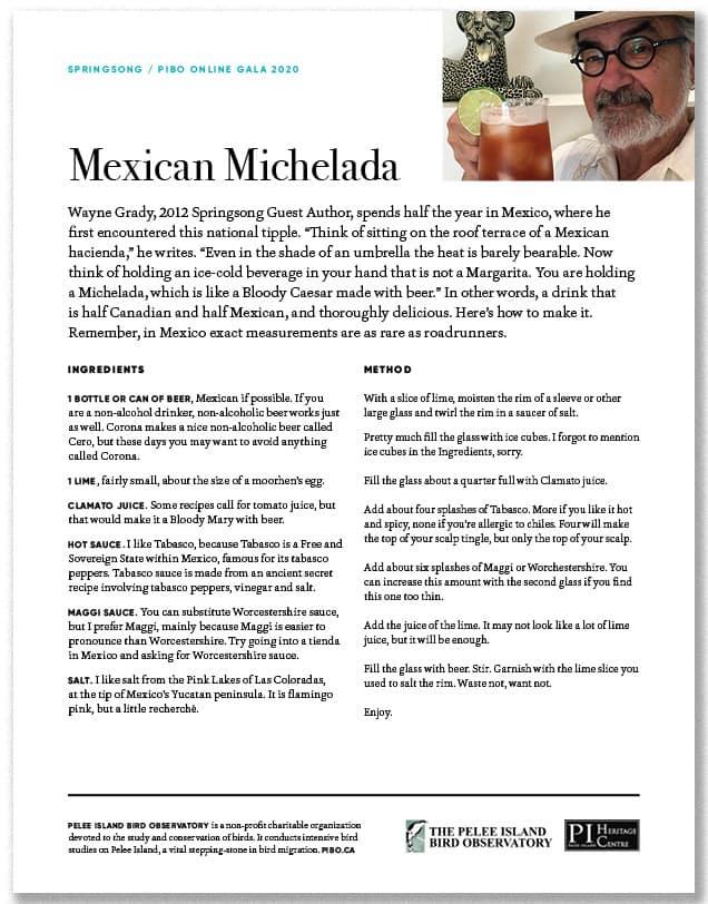 Mexican Michelada