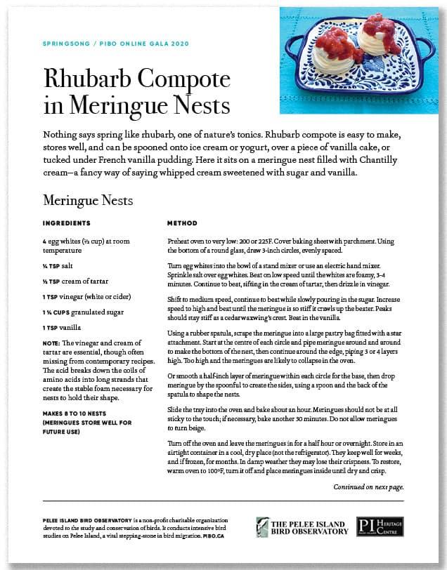 Rhubarb Compote in Meringue Nests
