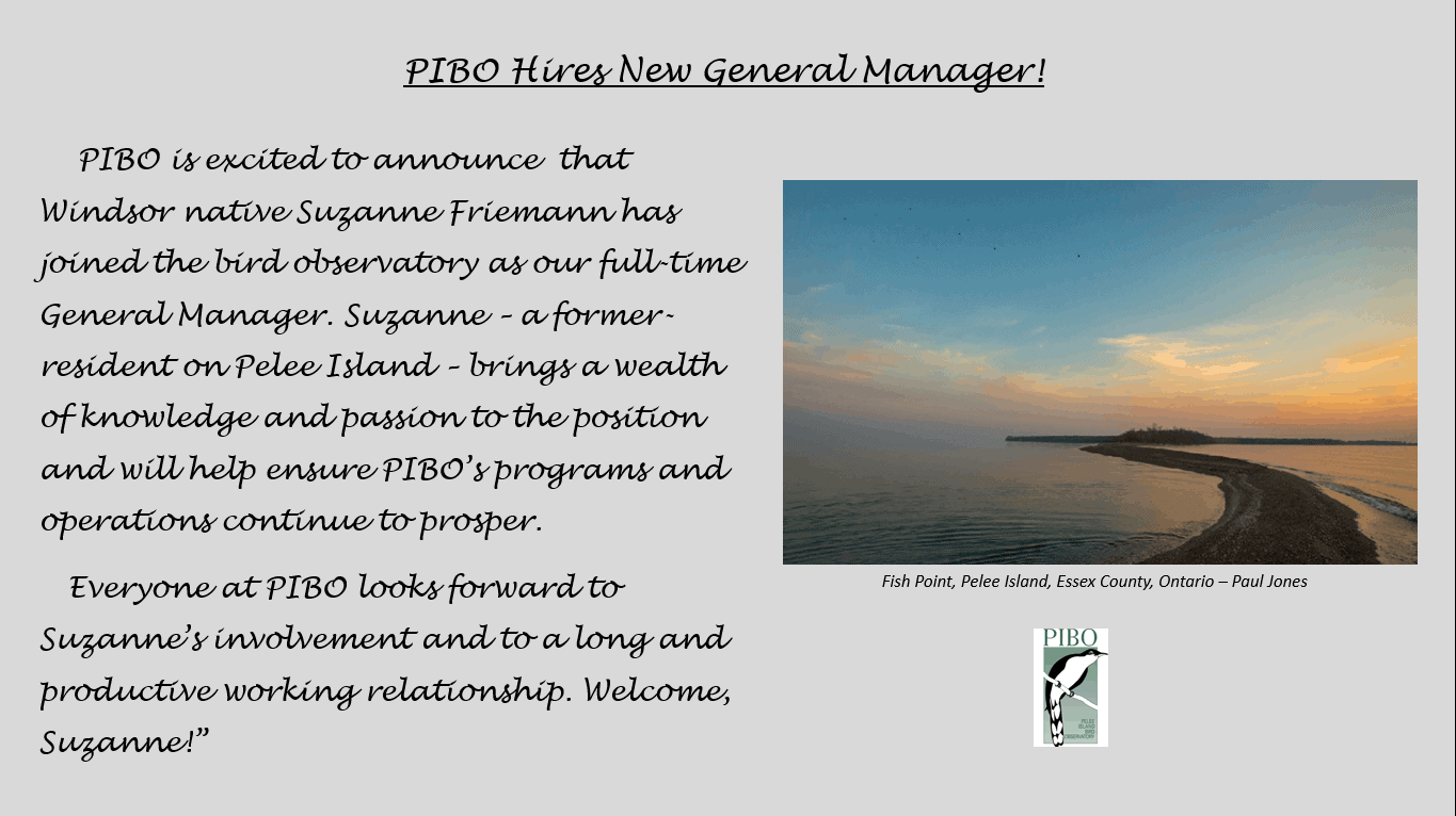 PIBO Hires New General Manager!