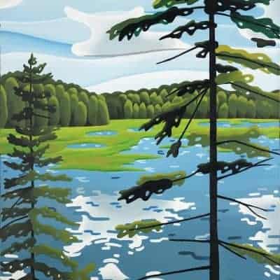 Beaver Dam, Algonquin Park by Av Atukuri