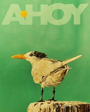'Ahoy' Tern by John Maurer