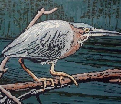 Green Heron by John Maurer