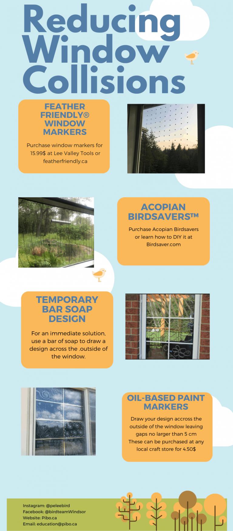 bird friendly poster pg 3