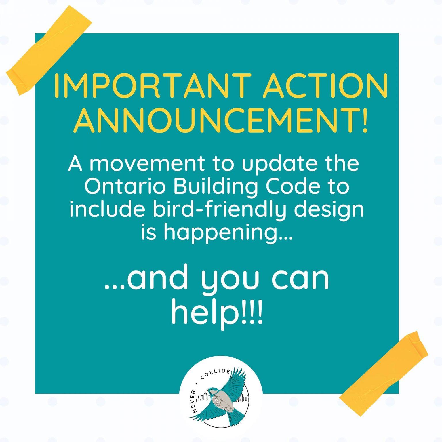 https://www.chrisglovermpp.ca/protect_migratory_birds?fbclid=IwAR3CDW-ulXdjHV62lL_mQHjiExdVPyXSKN-5YmdFaTQ3kKWlcYv3L5sWCgE